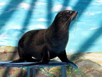 Seal №25465