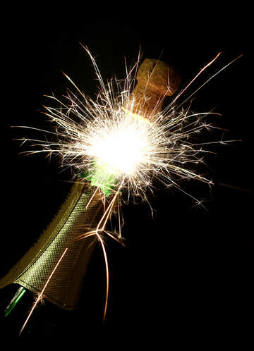 Champagne with sparks №25627