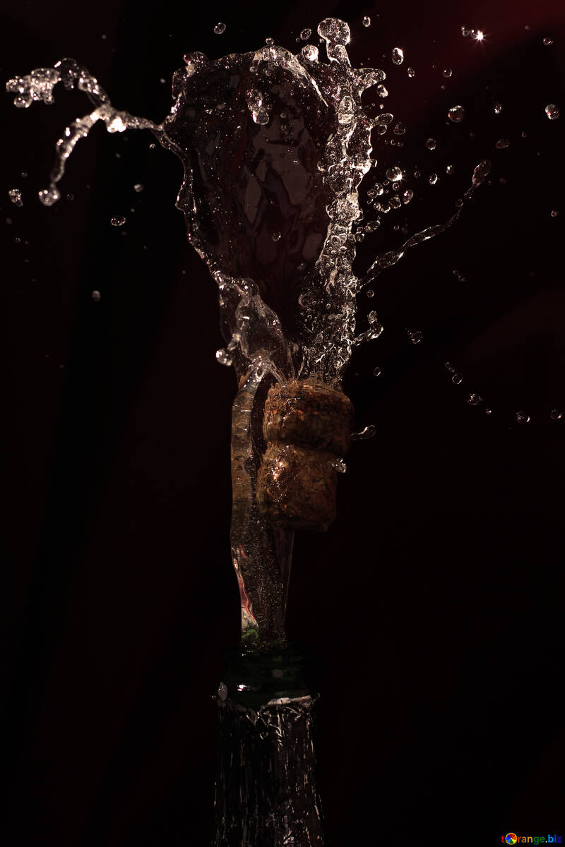 Champagne from bottle №25895