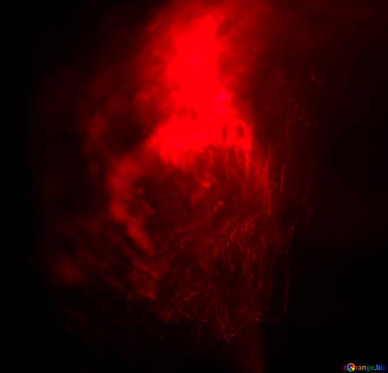 Sfondi Rossi Sfondo Rosso Ardente Sfondo Del Desktop 25851