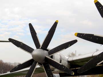 Screws aviation  №26168