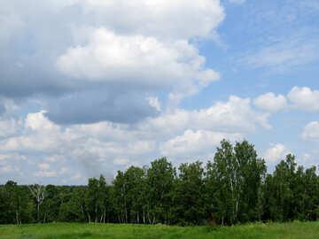Russische Landschaft №26754