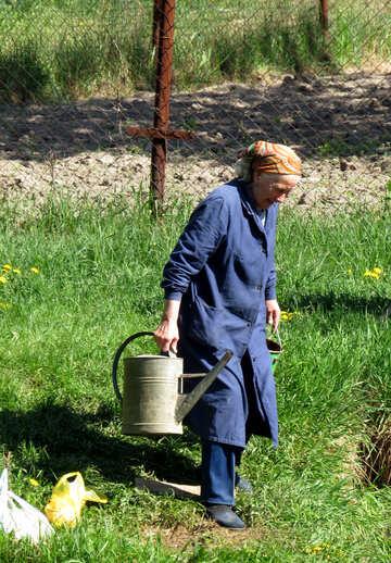 Rural life №26578