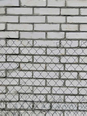 Texture of white brick wall behind the fence of the grid №26918