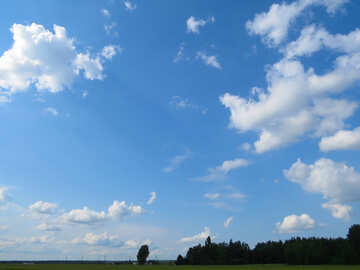 Blue sky over the green forest and field №27372