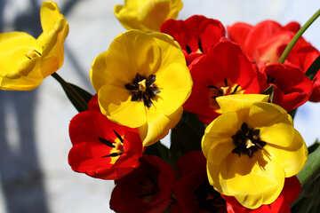 Spring bouquet №27423