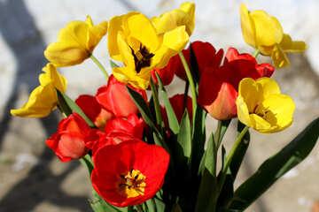 Bright bouquet №27433