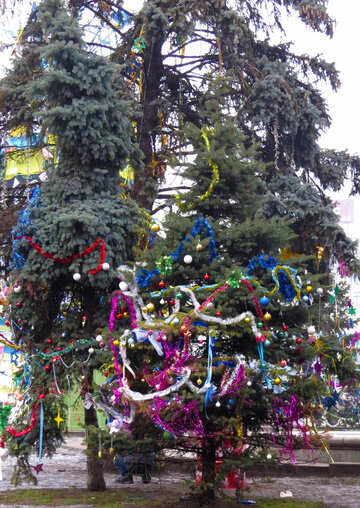 Christmas tree №27859