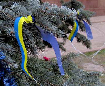 Flaggen der Ukraine und Europa auf dem Baum №27988