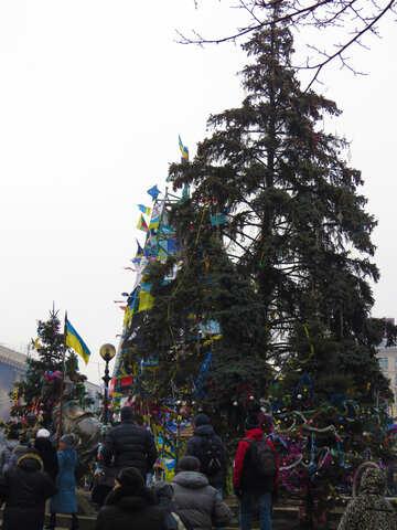 Neue Proteste in Kiew №27860