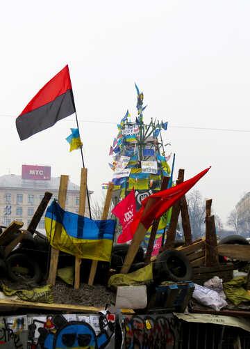 Kiev Christmas tree №27888