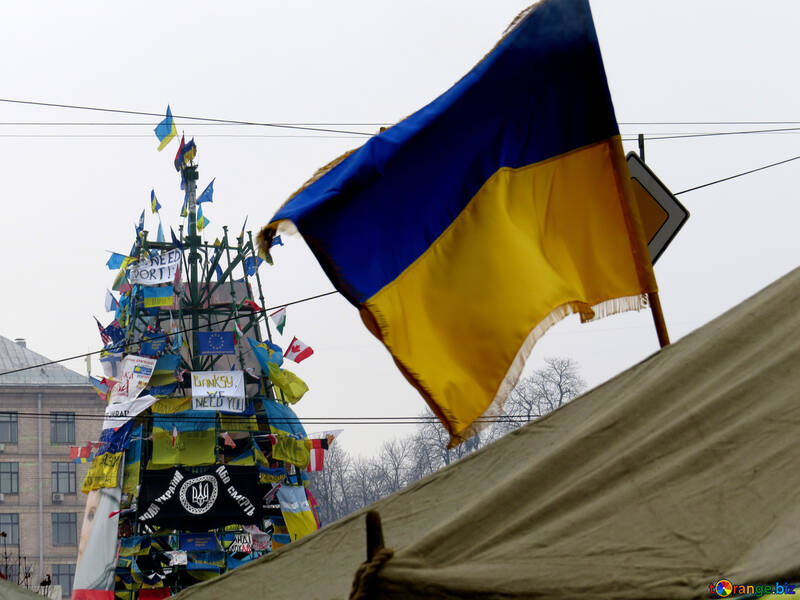 Revolutionary Christmas tree in Ukraine in 2013 №27909