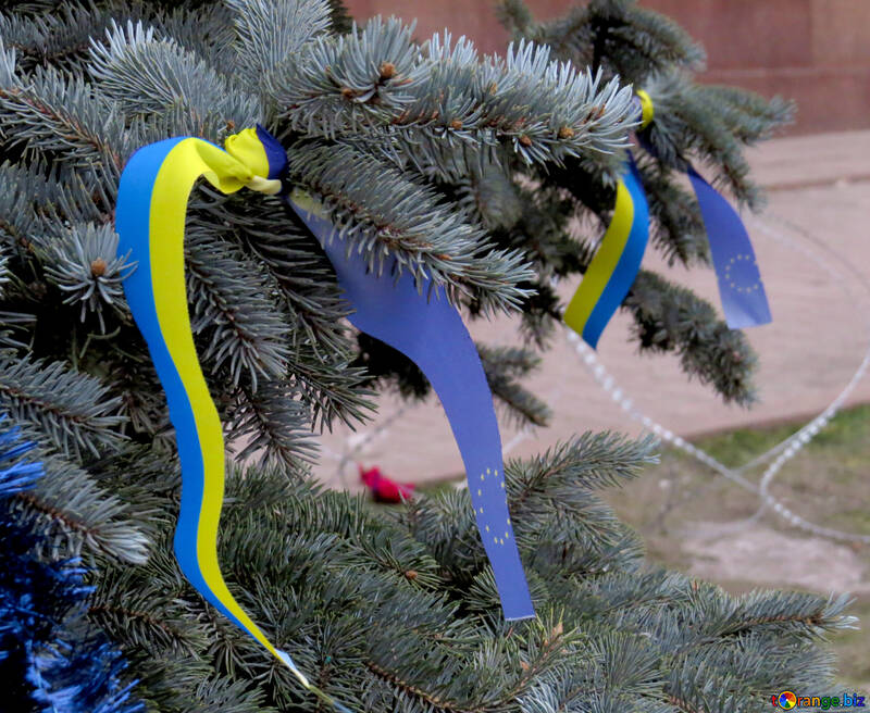 Flags of Ukraine and Europe on the tree №27988