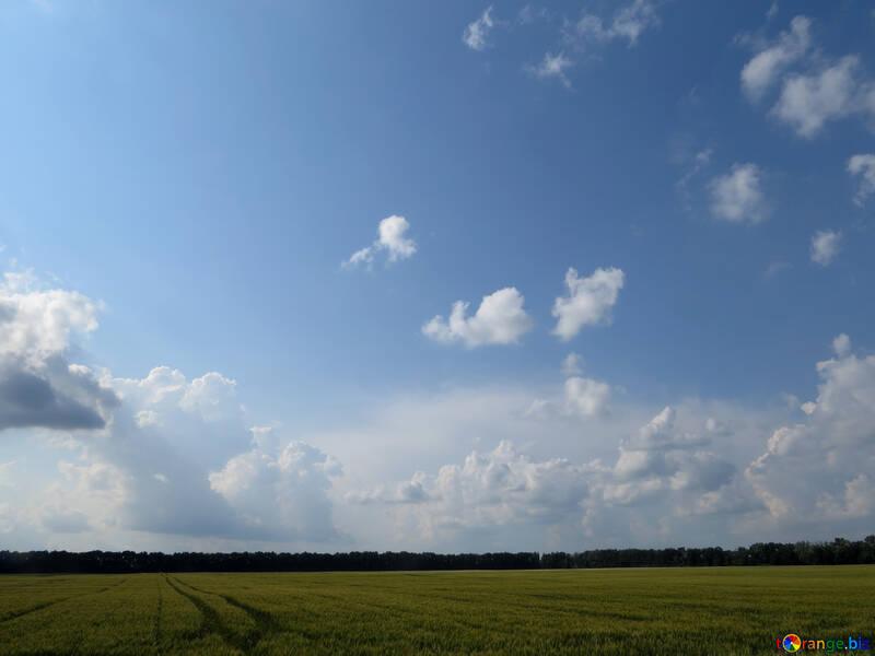 Beautiful sky over field №27342