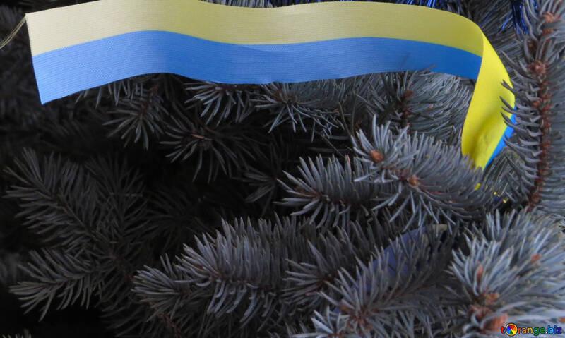Ukrainisch-Weihnachtsbaum №27991