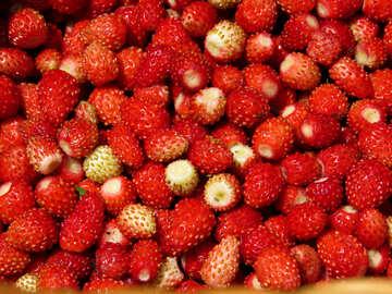 Strawberry background №28994
