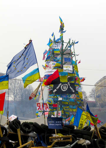 Christmas tree in Kiev 2013 №28049