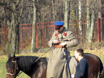 Horses in the movie №28808