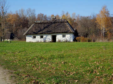 House in the village near the forest №28233