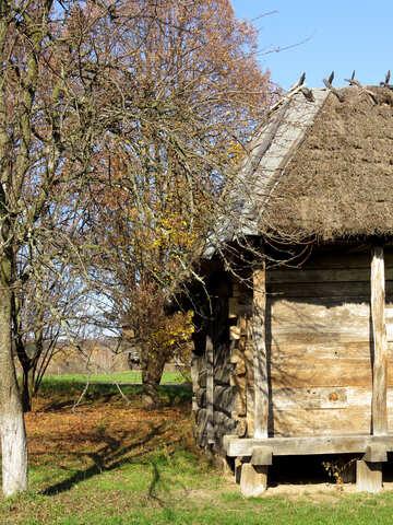 Autunno nel villaggio №28693