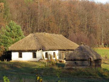Rural life №28486