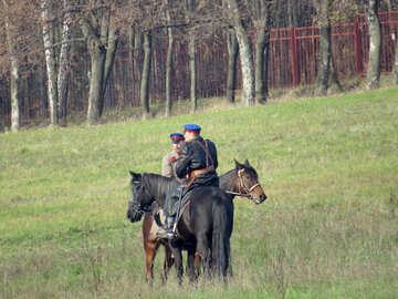 Cavalry №28811