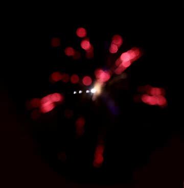 Salute red fiery flower №28127