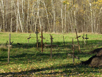 Neglected cemetery №28570