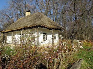 Ukrainisches Haus №28652