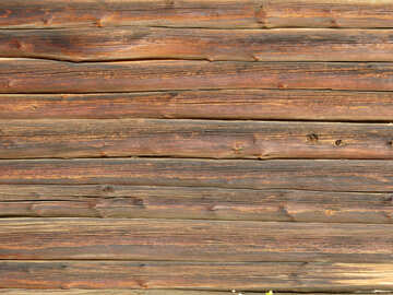 Texture of wood №28673