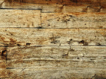 Texture of wood №28696