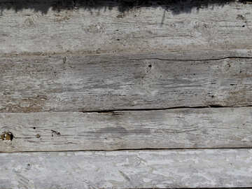 Texture of wood destroying №28844