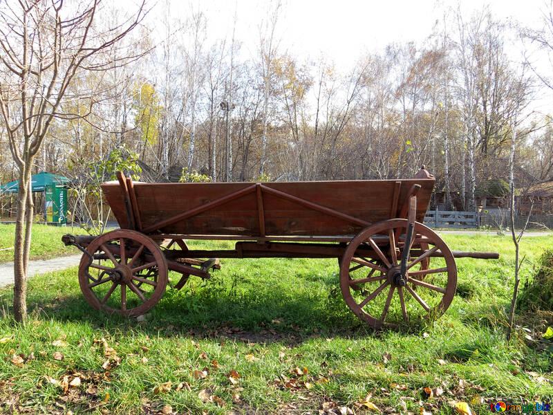 Cart №28830