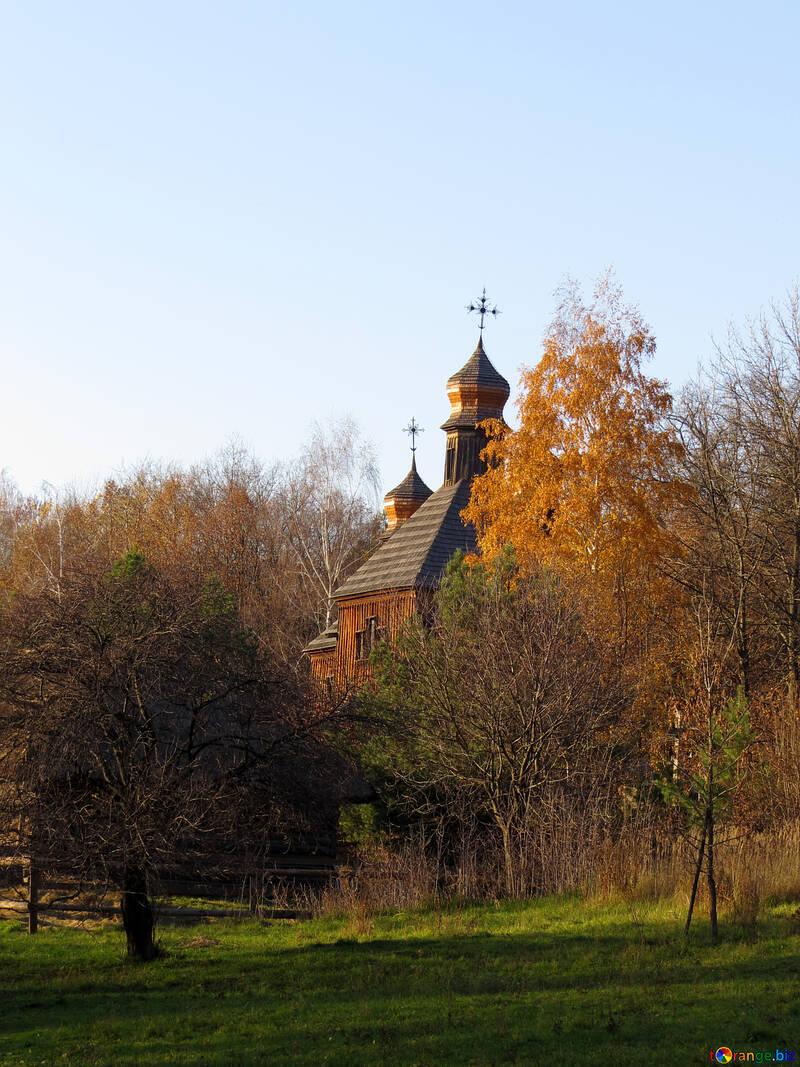 Церква в лісі №28518