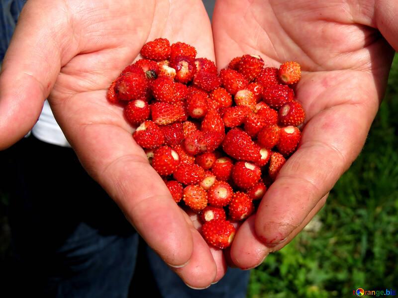 Heart of strawberries №28983