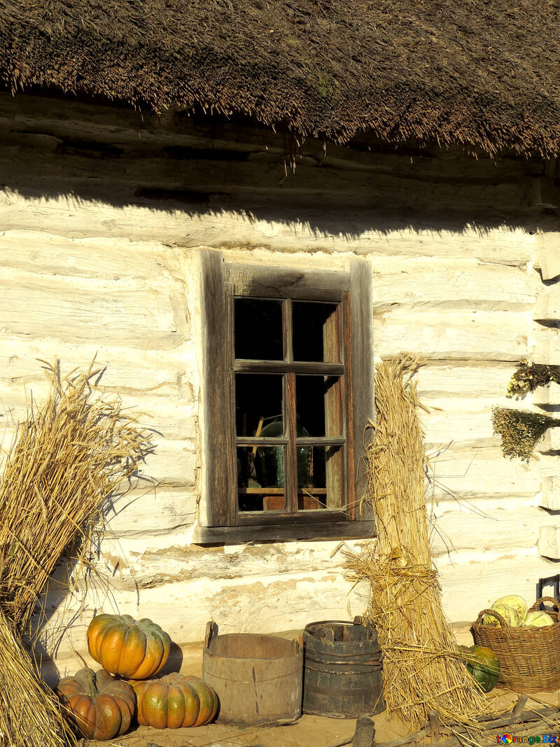 Farmhouse №28507
