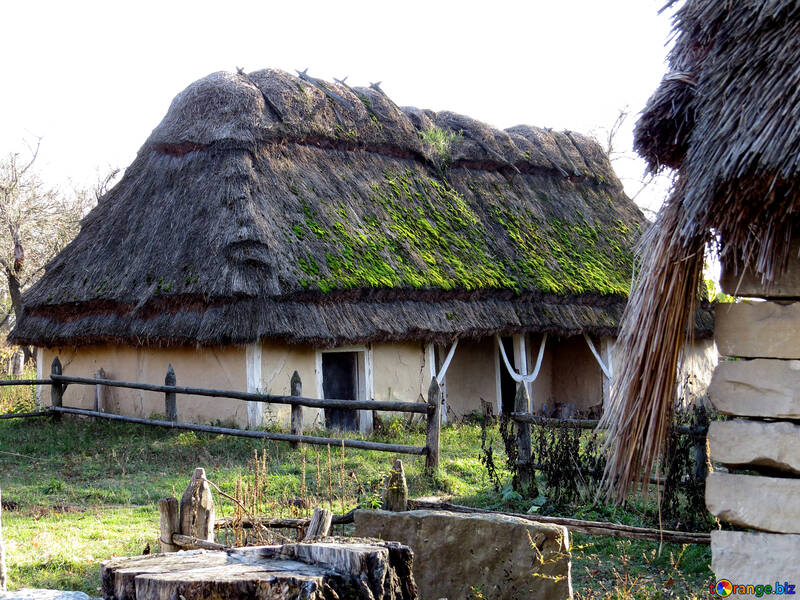 House under the Reed roof №28550