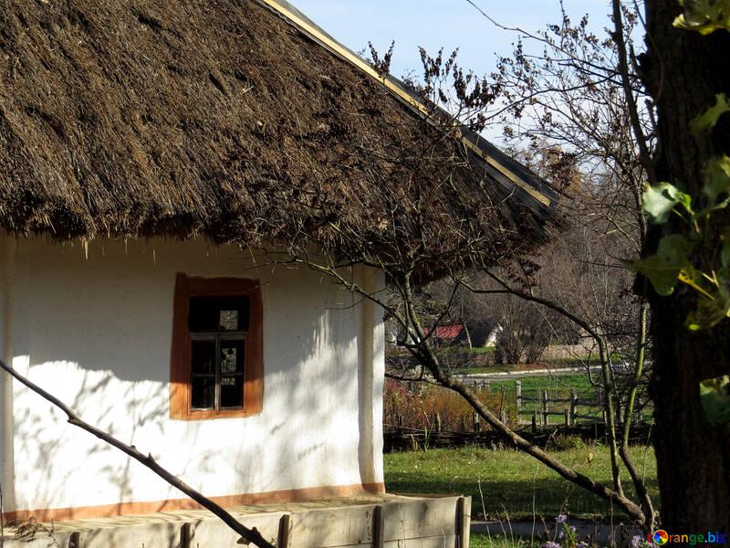 Casa ucraniana №28721