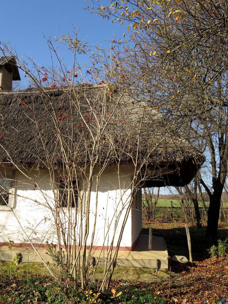 En el pueblo ucraniano №28790