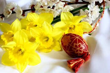 Easter celebrations №29970