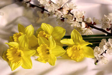 Spring bouquet №29974