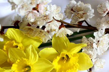 Spring Flower Bouquet №29973