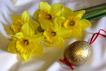 Daffodils and Easter egg №29984