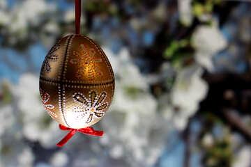 Festive egg №29342