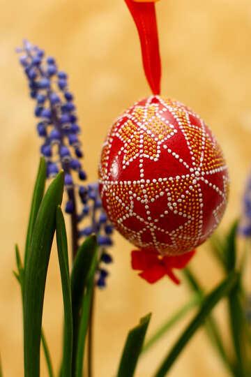 Easter Egg №29804