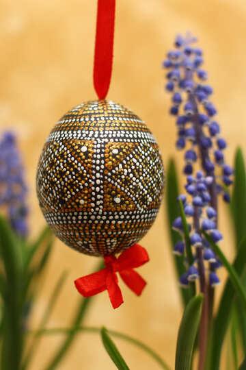 Easter egg №29807