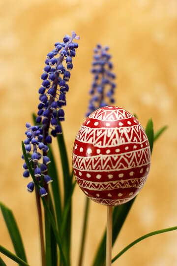 Easter Egg №29808