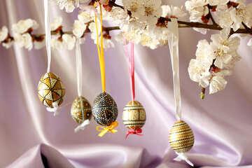 Eggs on flowering branch №29825