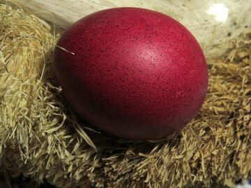 Red Egg №29410