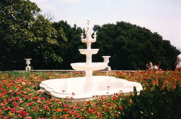 Fountain in the palace №29269